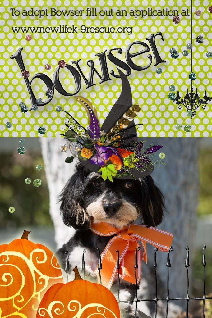Bowser-Halloween