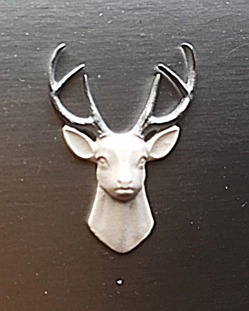 DAy 25 Deer Closeup