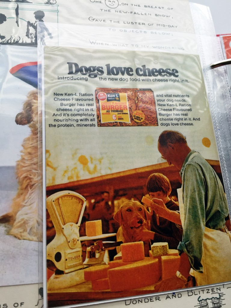 Dogs Love Cheese