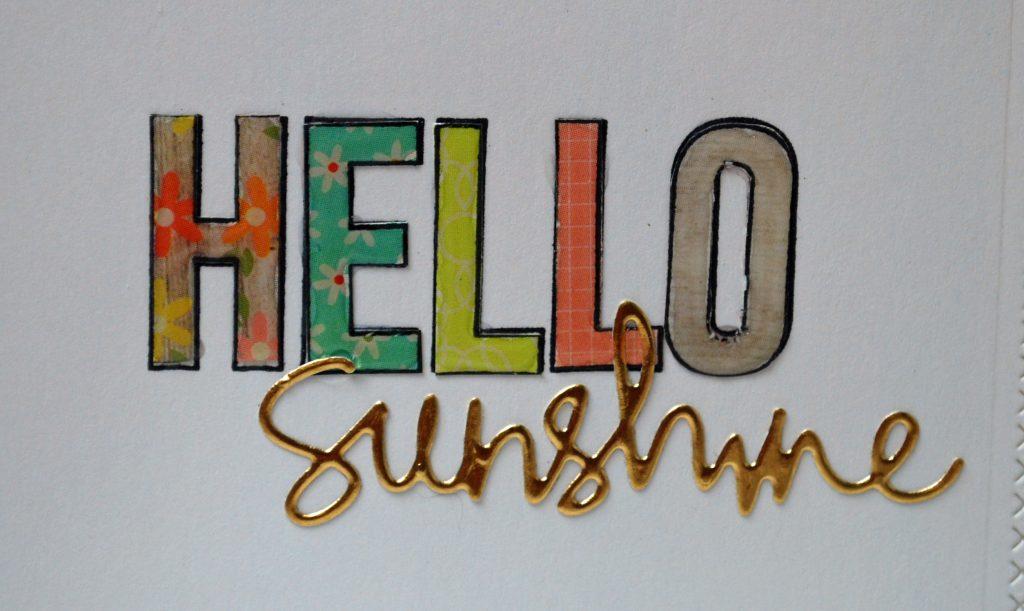 Hello Sunshine closeup